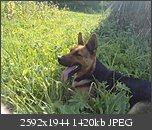 Poze facute cu telefoanele mobile-p120909_16.090002.jpg
